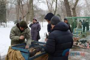 Выставка голубей.Луганск