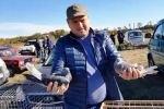 Выставка-ярмарка голубей, г.Курганинск, 14.10.2018г.