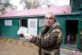 Голубевод из Челябинска