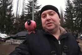 vystavka-golubej-v-g.kiev
