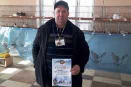 Выставка голубей в Тернополе