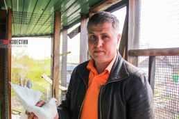 Голубевод александр Кочетков