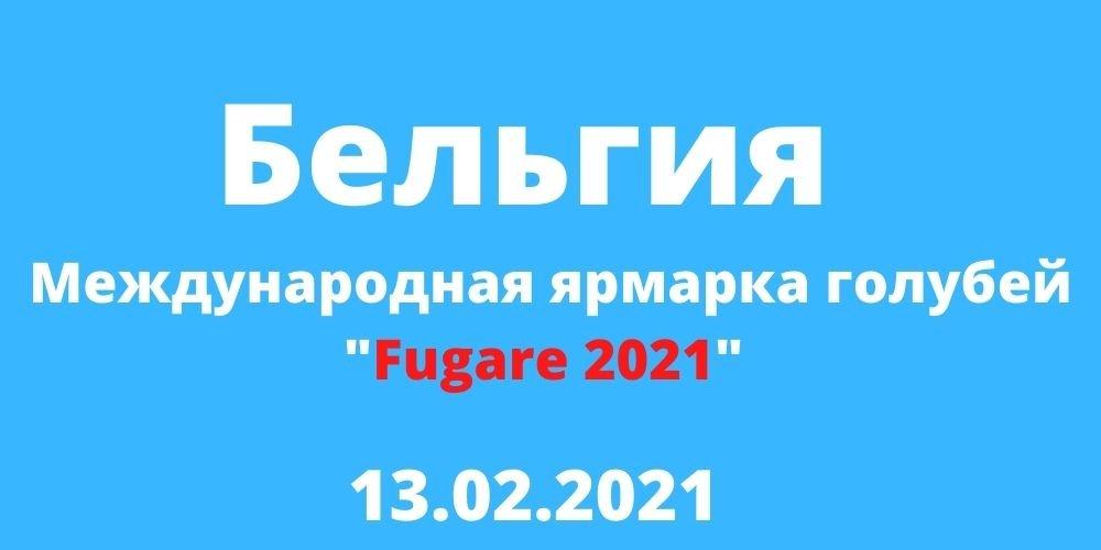 """Международная ярмарка голубей """"Fugare 2021"""" Бельгия"""