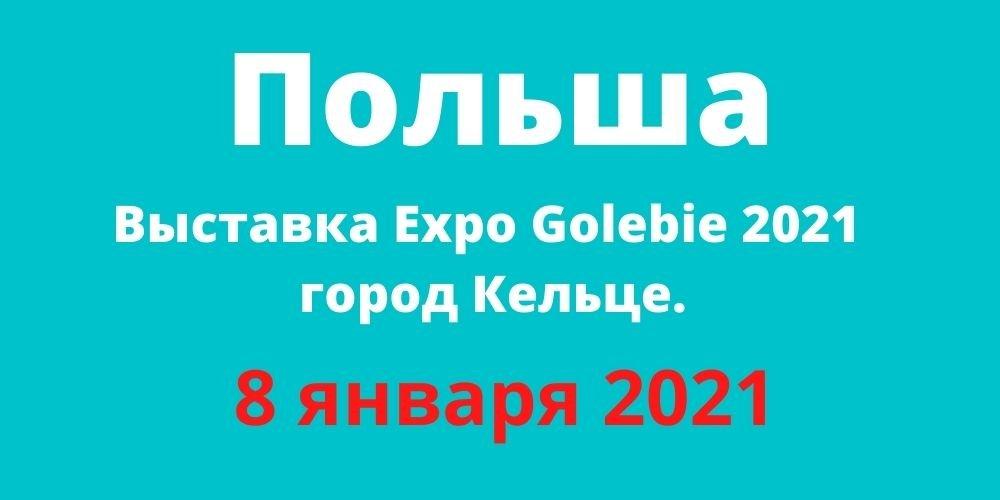Выставка Expo Golebie 2021 8 января, город Кельце, Польша.