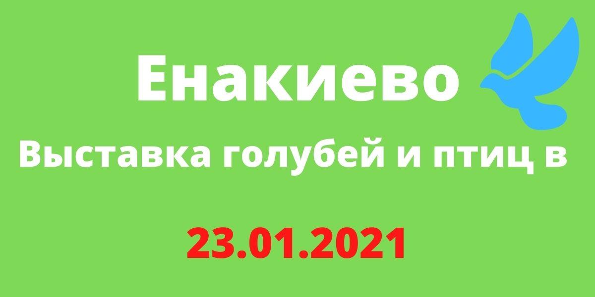 Выставка голубей и птиц в Енакиево 23.01.2021