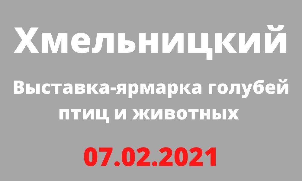Выставка-ярмарка голубей птиц и животных Хмельницкий 07.02.2021