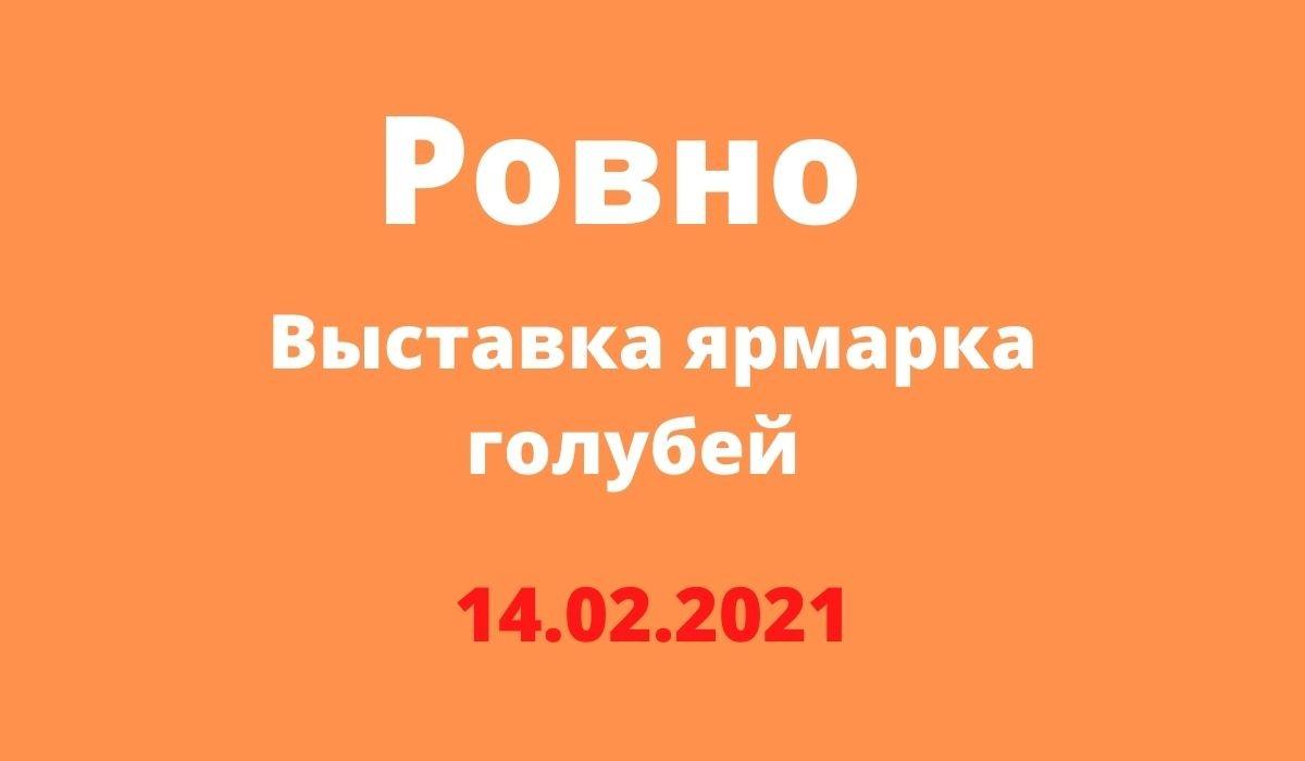 Выставка ярмарка голубей Ровно 14.02.2021