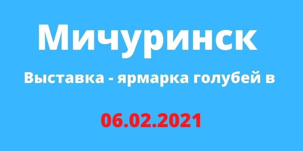Выставка - ярмарка голубей в Мичуринске 06.02.2021