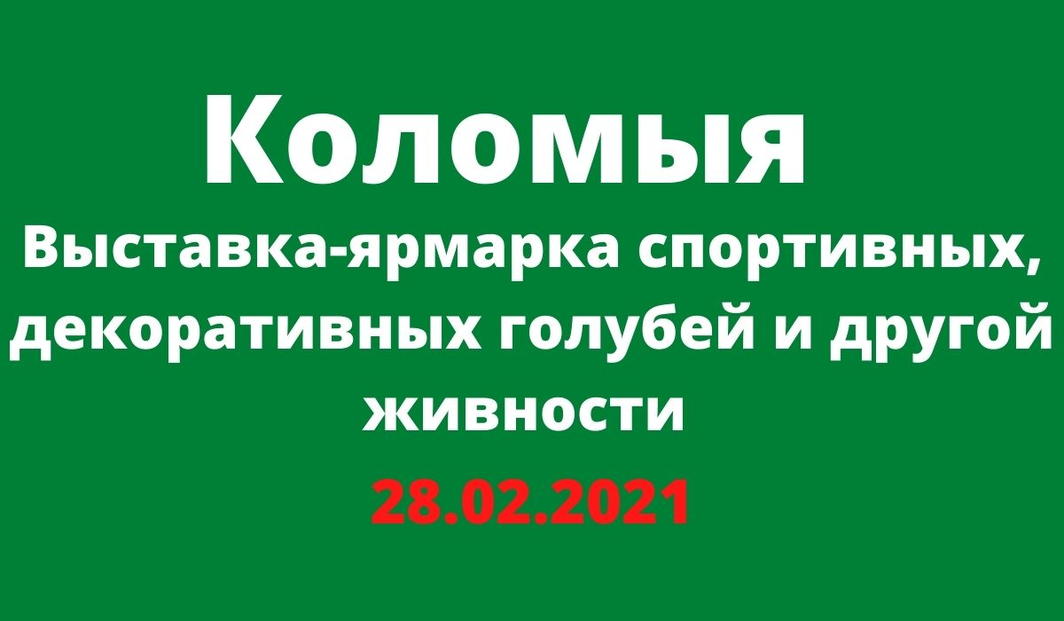 Выставка-ярмарка спортивных, декоративных голубей и другой живности Коломыя 28.02.2021