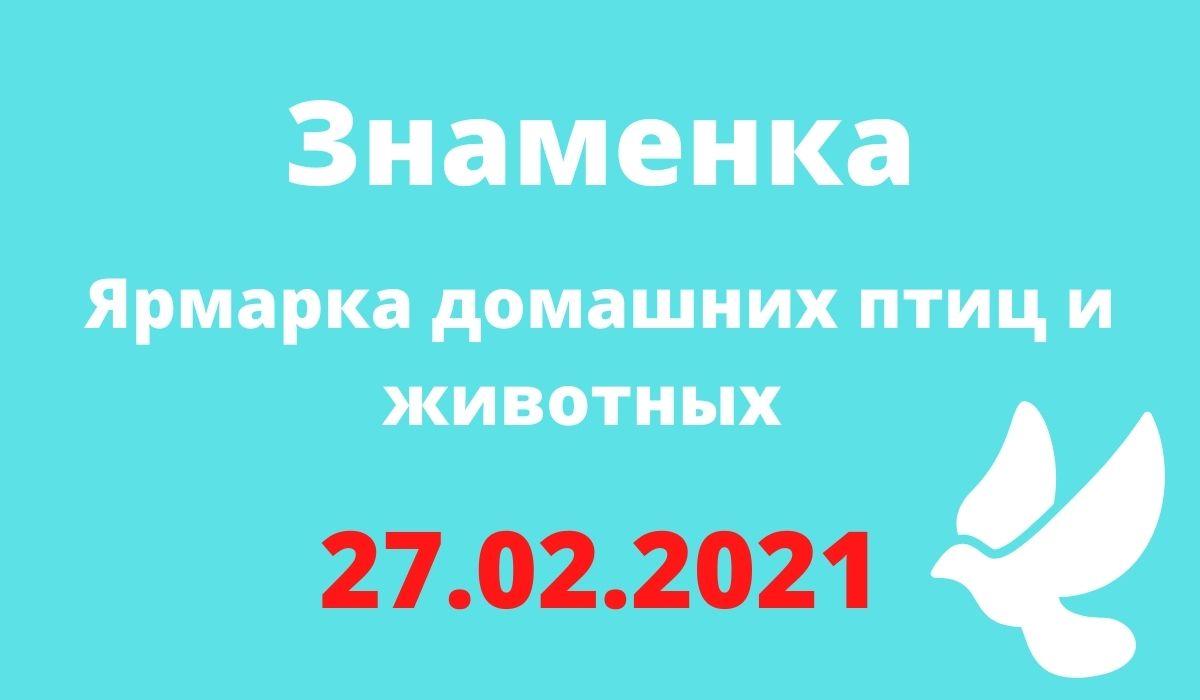 Ярмарка домашних птиц и животных 27.02.2021 Знаменка