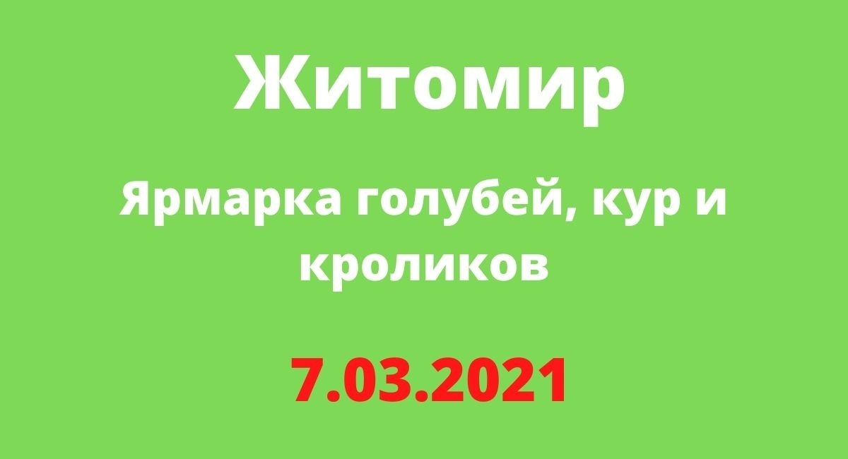 Ярмарка голубей, кур и кроликов, Житомир 7.03.2021