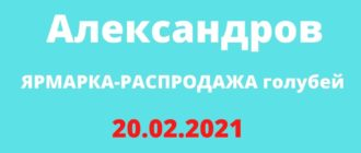ЯРМАРКА-РАСПРОДАЖА голубей 20.02.2021 Александров