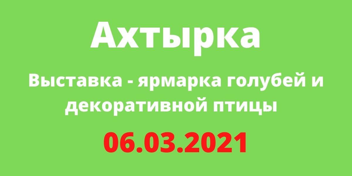 Выставка голубей Ахтырка 06.03.2021