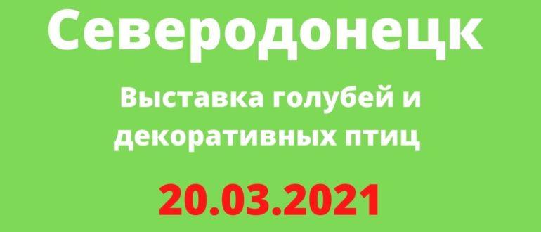 Выставка голубей и декоративных птиц 20.03.2021 Северодонецк