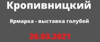 Ярмарка - выставка голубей 20.03.2021 Кропивницкий