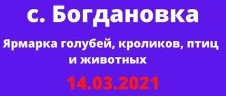 Ярмарка голубей, кроликов, птиц и животных с. Богдановка 14.03.2021