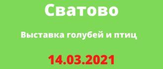Выставка голубей и птиц 14.03.2021 Сватово