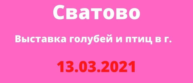 Выставка голубей и птиц в г. Сватово 13.03.2021