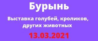 Выставка голубей, кроликов, других животных 13.03.2021 Бурынь