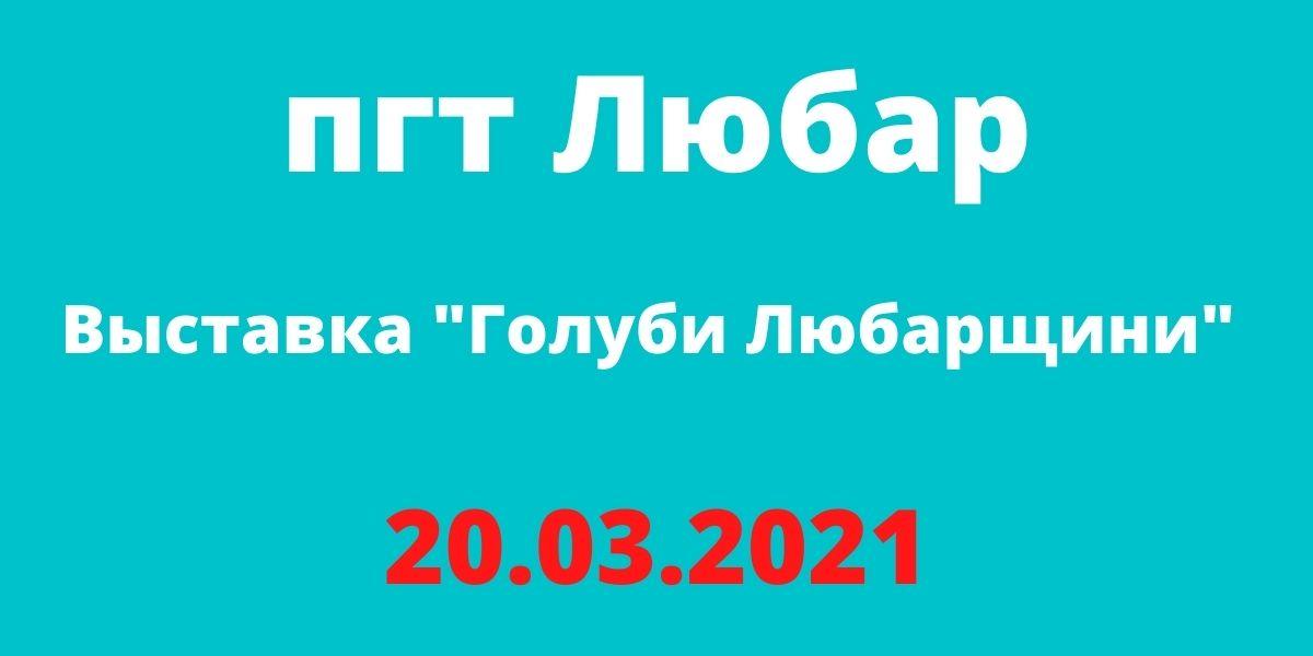 "Выставка ""Голуби Любарщини"" 20.03.2021 пгт Любар"