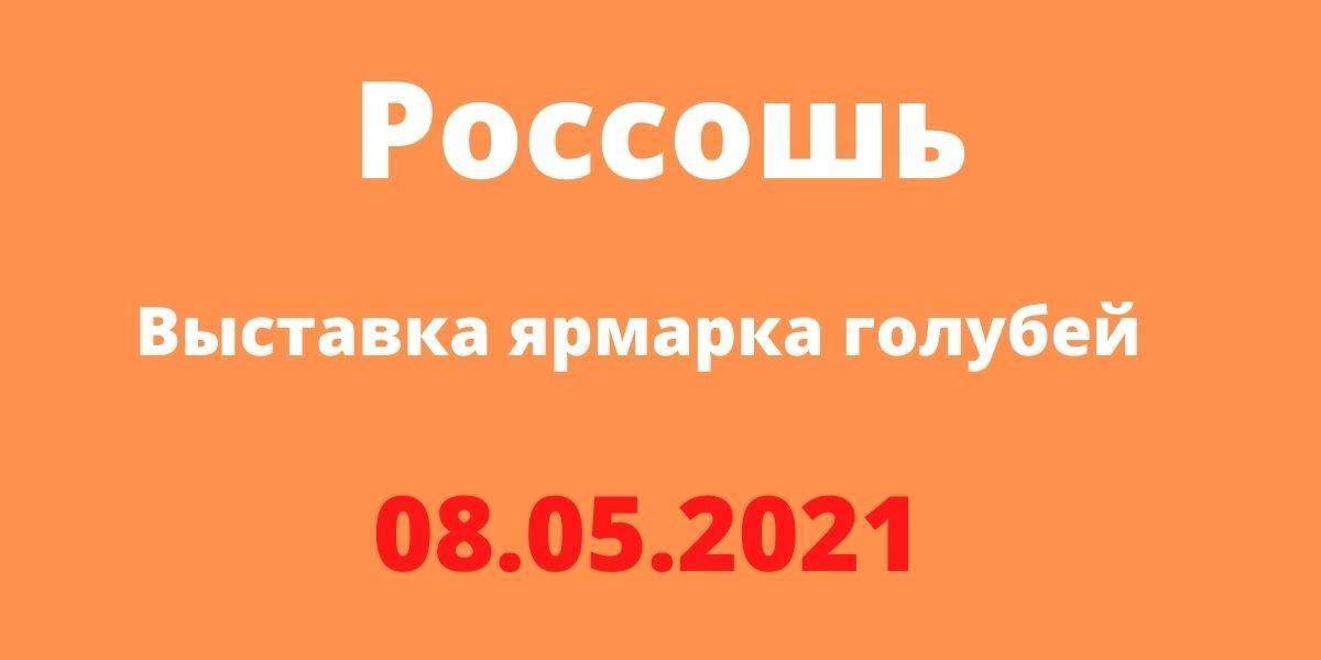 ярмарка голубей 08.05.2021 Россошь