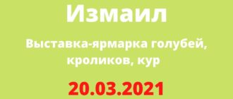 Выставка-ярмарка голубей, кроликов, кур 20.03.2021 Измаил