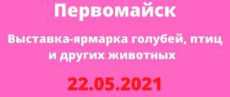 Ярмарка Первомайск